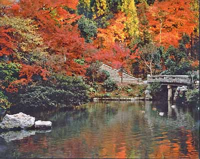 Kyoto in autumn, from Wikimedia Commons by Wikimedia user  FG2