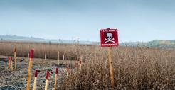 Ukraine Mine field